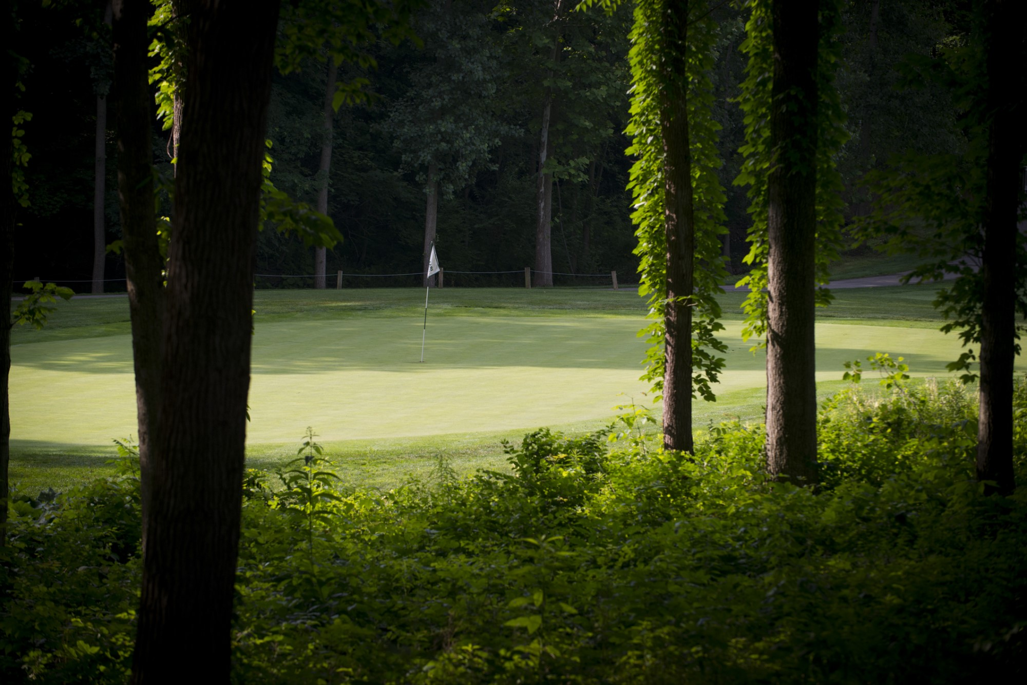 Safari Golf Course 1903 - Grahm S. Jones, Columbus Zoo and Aquarium A